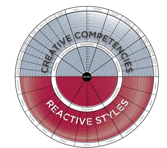 Executive Coaching - Leadership Circle 360 Assessment